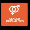 Big ideas on Gender inequalities